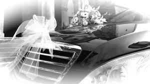 Servizio matrimoni (wedding service)